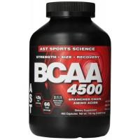 BCAA 4500 (462капс)